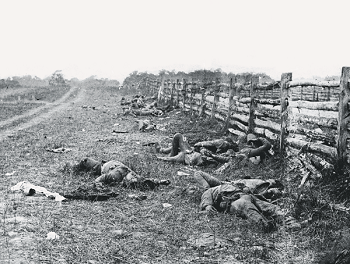 The Dead of Antietam (1862)
