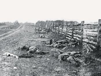 The Dead of Antietam (1862)