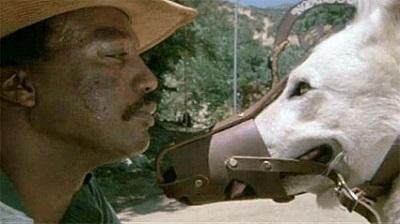 White Dog (Samuel Fuller, 1982)