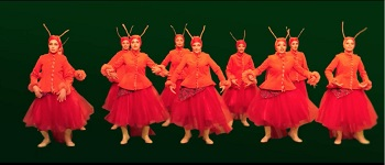 pig-khook-dancing-insects (1)