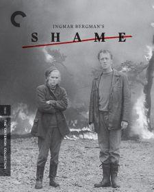Shame 02